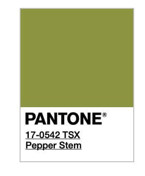 Otro de los colores del 2019 es el Pepper Stem Pantone.