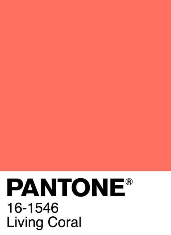 Uno de los colores del 2019 es el Pantone Living Coral.